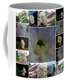 Coffee Mug featuring the photograph Cactus Flower Collage by Leanne Seymour