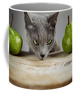 Cat And Pears Coffee Mug