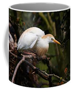 Cattle Egret In A Tree Coffee Mug