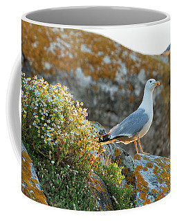 Cíes Islands. Islas Atlánticas Coffee Mug