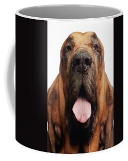 Close Up Portrait Of A Bloodhound Coffee Mug
