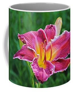 Crimson Day Lily Coffee Mug