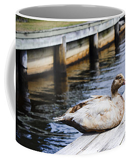 Cute Brown Duck Sitting On A Wooden Pier Coffee Mug