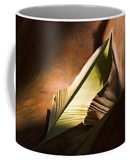 Cycle Of Life Coffee Mug