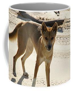 Dingo Coffee Mug by Carol Ailles