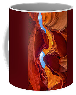 Coffee Mug featuring the photograph Enduring Beauty  by Dustin  LeFevre
