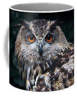 Coffee Mug featuring the photograph European Eagle Owl by Nick  Biemans
