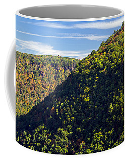 Pennsylvania Grand Canyon Fall 2014 Coffee Mug