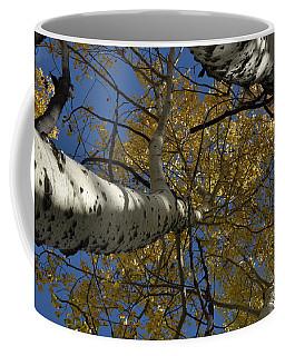 Fall Aspen Coffee Mug