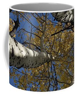 Fall Aspen Coffee Mug