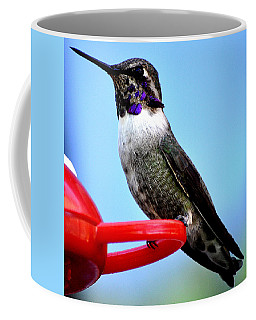 Coffee Mug featuring the photograph Male Anna On Perch by Jay Milo