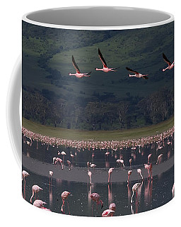 Flamingos   #6590 Coffee Mug