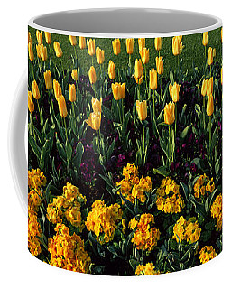 Flowers In Hyde Park, City Coffee Mug