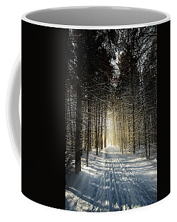 Coffee Mug featuring the photograph Forest Light by Lars Lentz