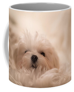 Fresh From A Long Winter's Nap Coffee Mug