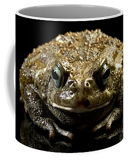 Coffee Mug featuring the photograph Frog by Gunnar Orn Arnason
