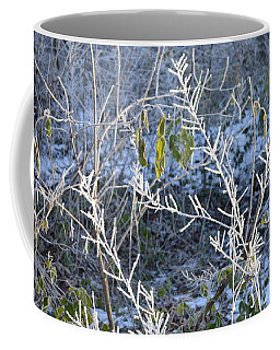 Coffee Mug featuring the photograph Frozen by Felicia Tica