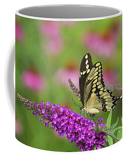 Giant Swallowtail Butterfly Papilio Coffee Mug