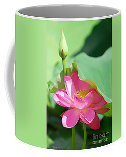 D48l-96 Water Lily At Goodale Park Photo Coffee Mug