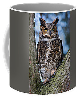 Great Horned Owl Coffee Mug by Dale Kincaid