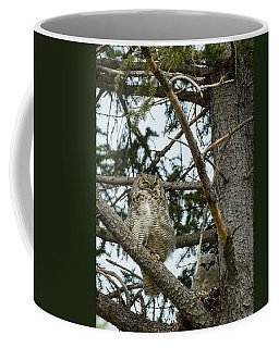 Great Horned Owls Coffee Mug
