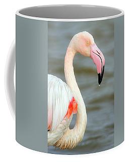 Greater Flamingo Phoenicopterus Roseus Coffee Mug