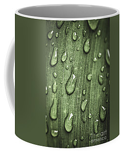 Green Leaf Abstract With Raindrops Coffee Mug