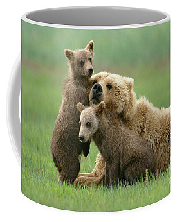 Coffee Mug featuring the photograph Grizzly Cubs Play With Mom by Yva Momatiuk John Eastcott