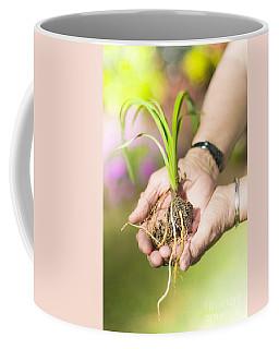 Hands Holding Plant Coffee Mug