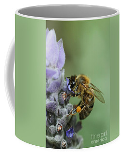 Coffee Mug featuring the photograph Happy Bee by Joy Watson