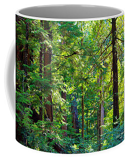 Hoh Rain Forest Coffee Mug by Jeanette C Landstrom