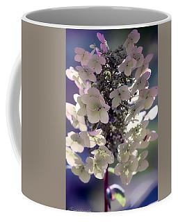 Hydrangea  Coffee Mug by Debra Forand