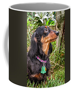Katie Coffee Mug by Jim Thompson
