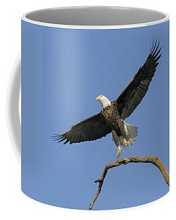 King Of The Sky 3 Coffee Mug