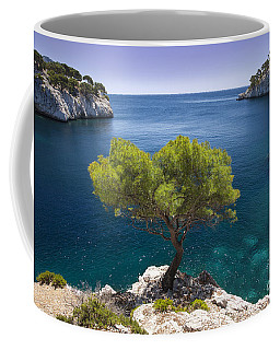 Coffee Mug featuring the photograph Lone Pine Tree by Brian Jannsen