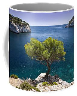 Lone Pine Tree Coffee Mug