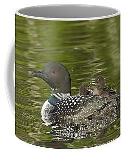 Loon Parent With Two Chicks Coffee Mug