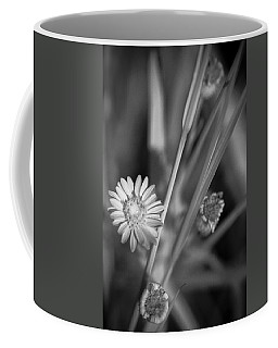 Coffee Mug featuring the photograph Loxahatchee Flower by Bradley R Youngberg