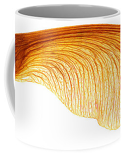 Maple Seed Pod Coffee Mug