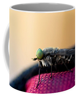 March Fly Macro Coffee Mug