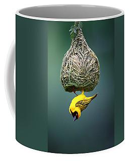 Masked Weaver At Nest Coffee Mug