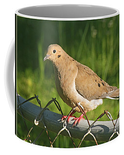 Morning Dove I Coffee Mug