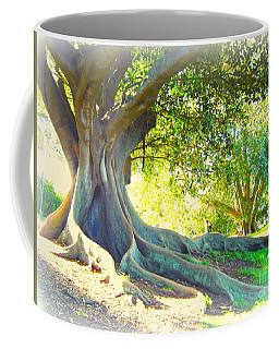Morton Bay Fig Tree Coffee Mug