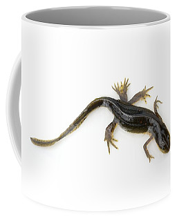 Mutated Eastern Newt Coffee Mug