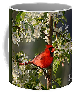 Coffee Mug featuring the photograph Red Cardinal In Flowers by Nava Thompson