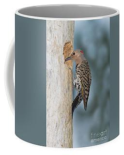 Northern Flicker Coffee Mug