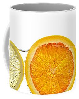 Orange Lemon And Lime Slices In Water Coffee Mug
