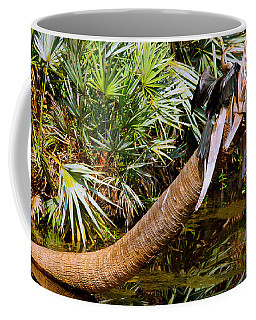 Oriental Darter Anhinga Melanogaster Coffee Mug