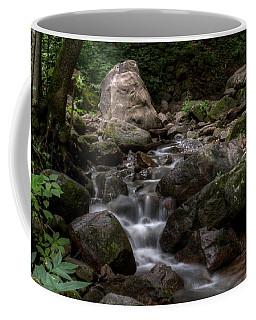 Parfrey's Glen Creek Coffee Mug