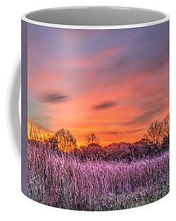 Illinois Prairie Moments Before Sunrise Coffee Mug